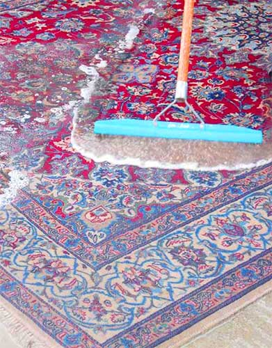 Oriental rug cleaning with immersive wet process